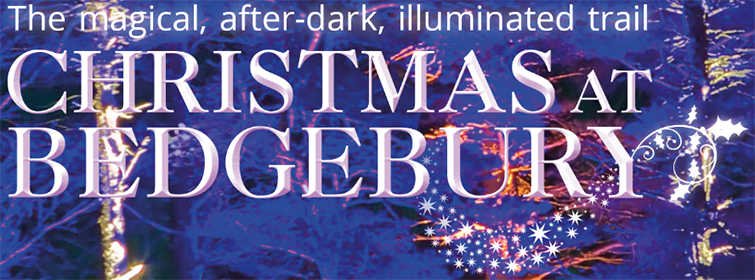 Christmas At Bedgebury – The magical after-dark illuminated trail...