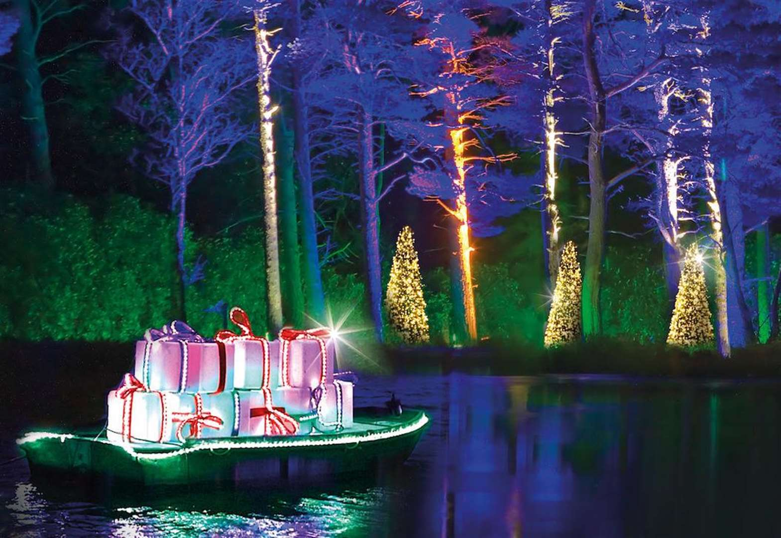 Festive forest light trail unveiled