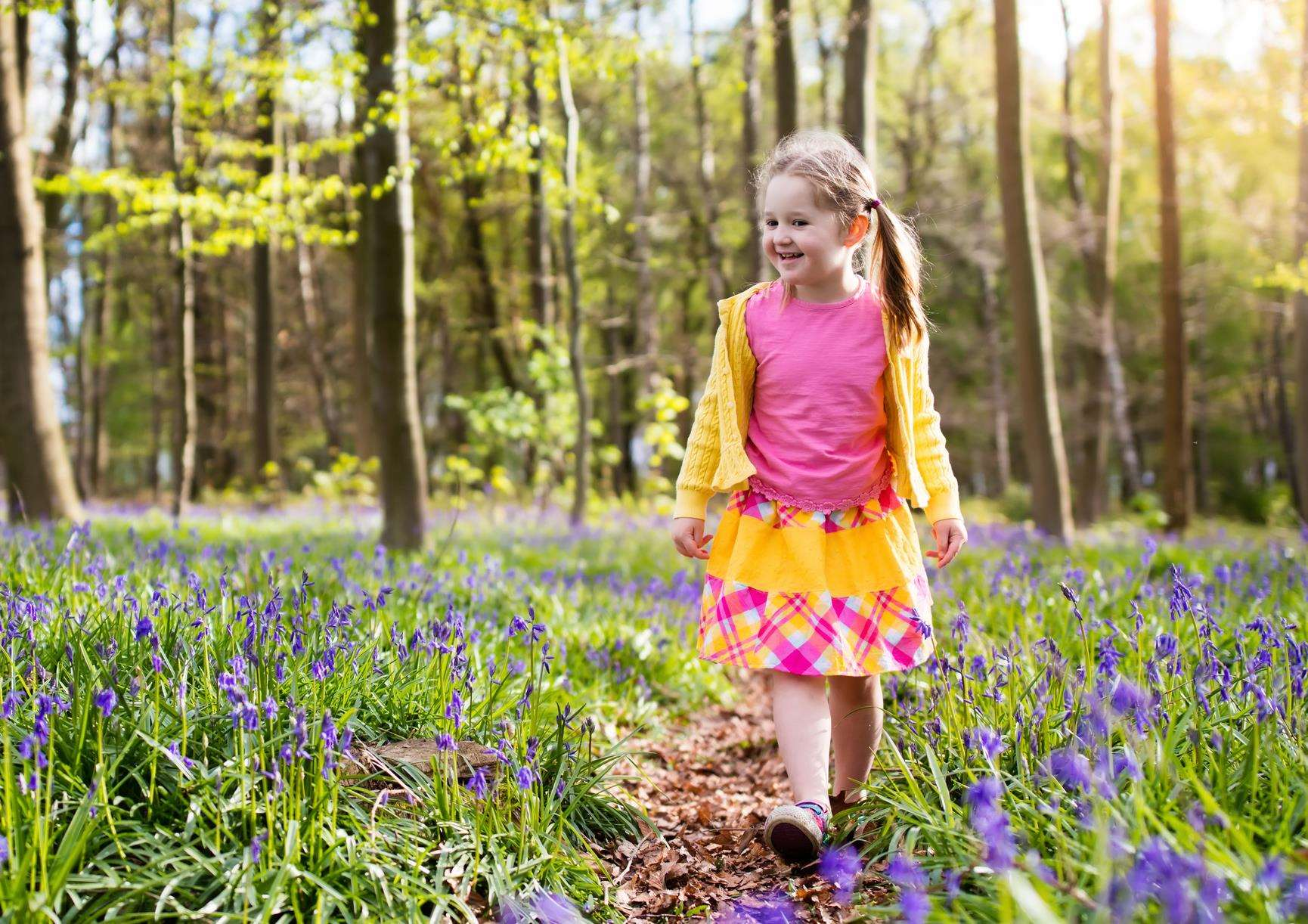 Enjoy getting out and about this May half term with National Trust activities