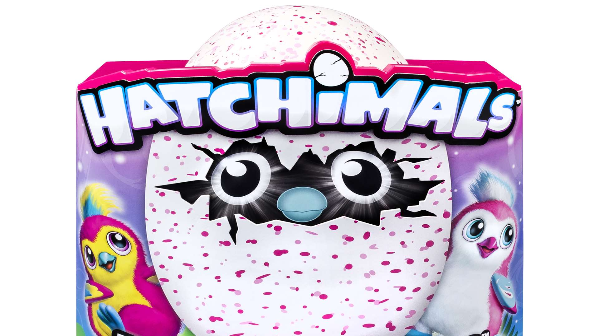 Top 5 Toys For Christmas : Hatchimals among the most popular toys for christmas