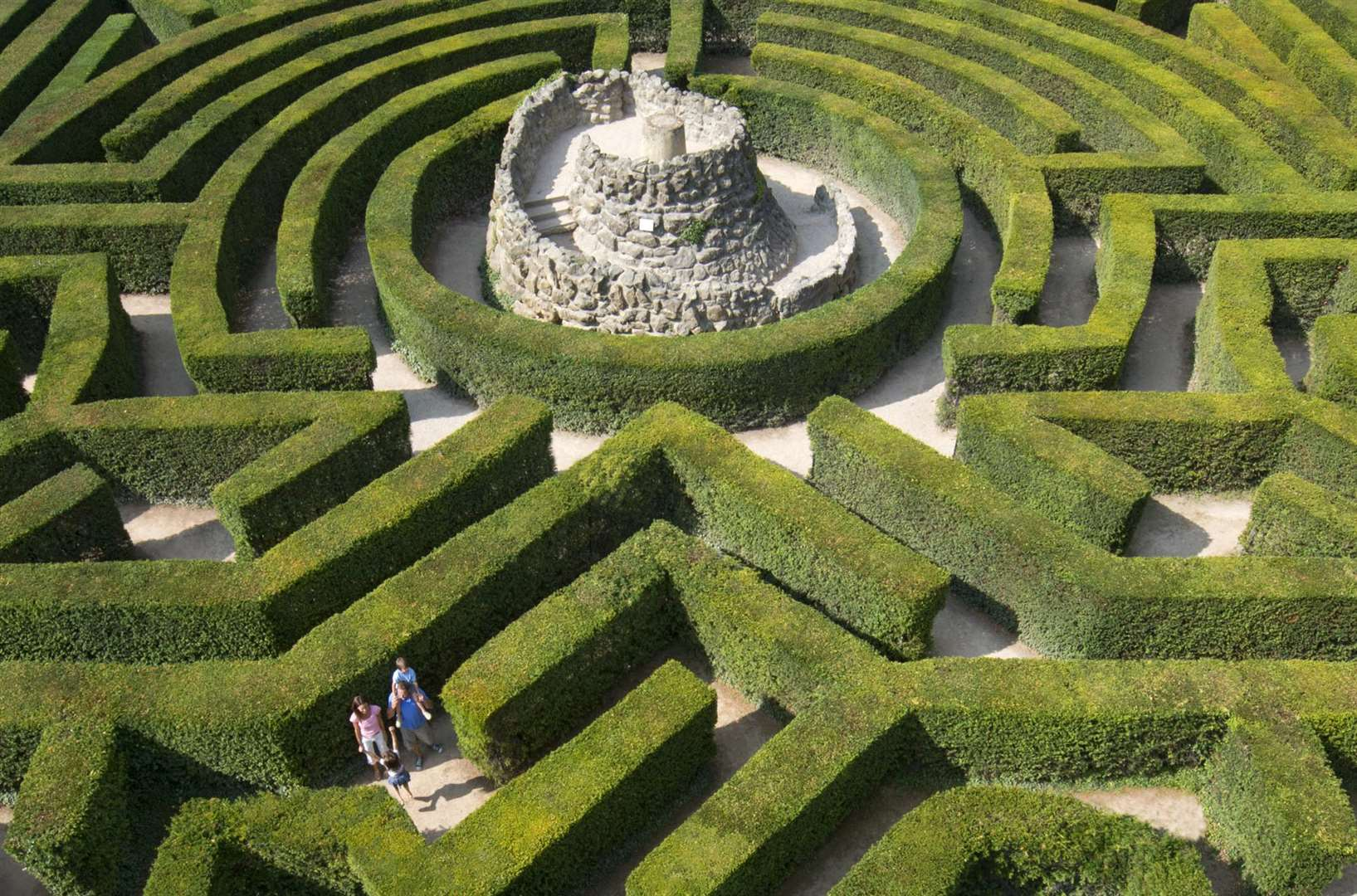 The maze at Leeds Castle