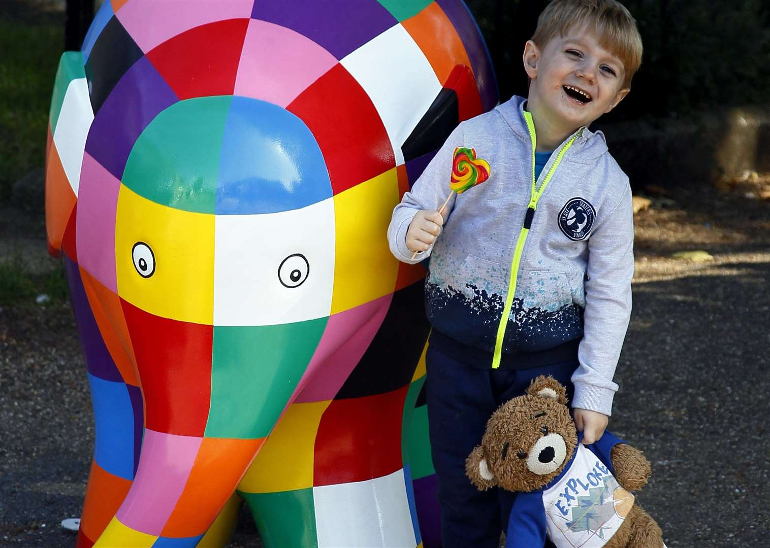 Elmer the Elephant Art Trail will come to Maidstone next year instead
