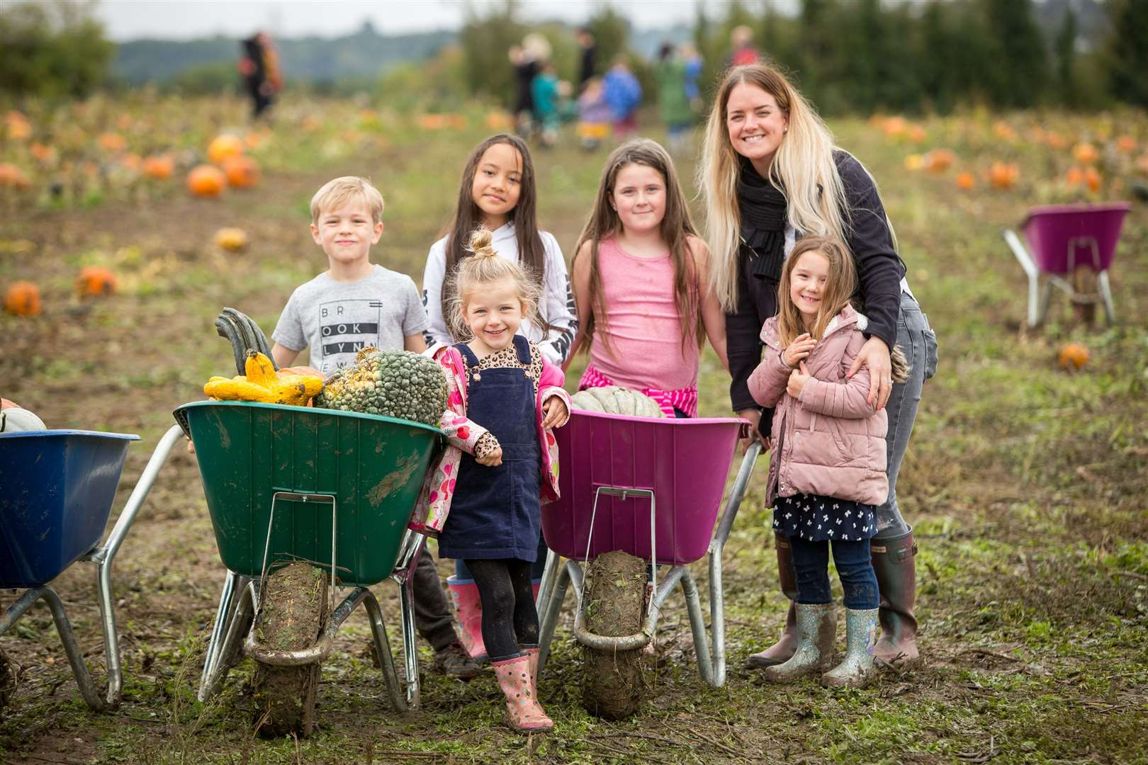 Take the kids to pick a pumpkin this weekend