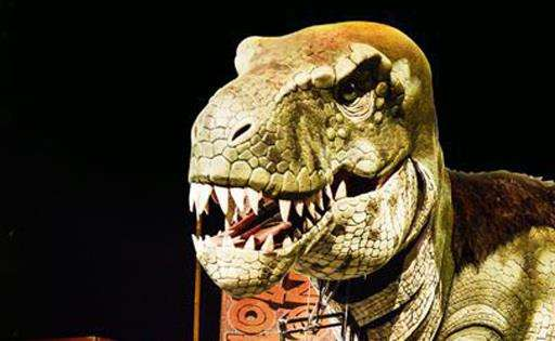 Get up close to a mighty T-Rex at Dinosaurs in the Wild! (3436608)