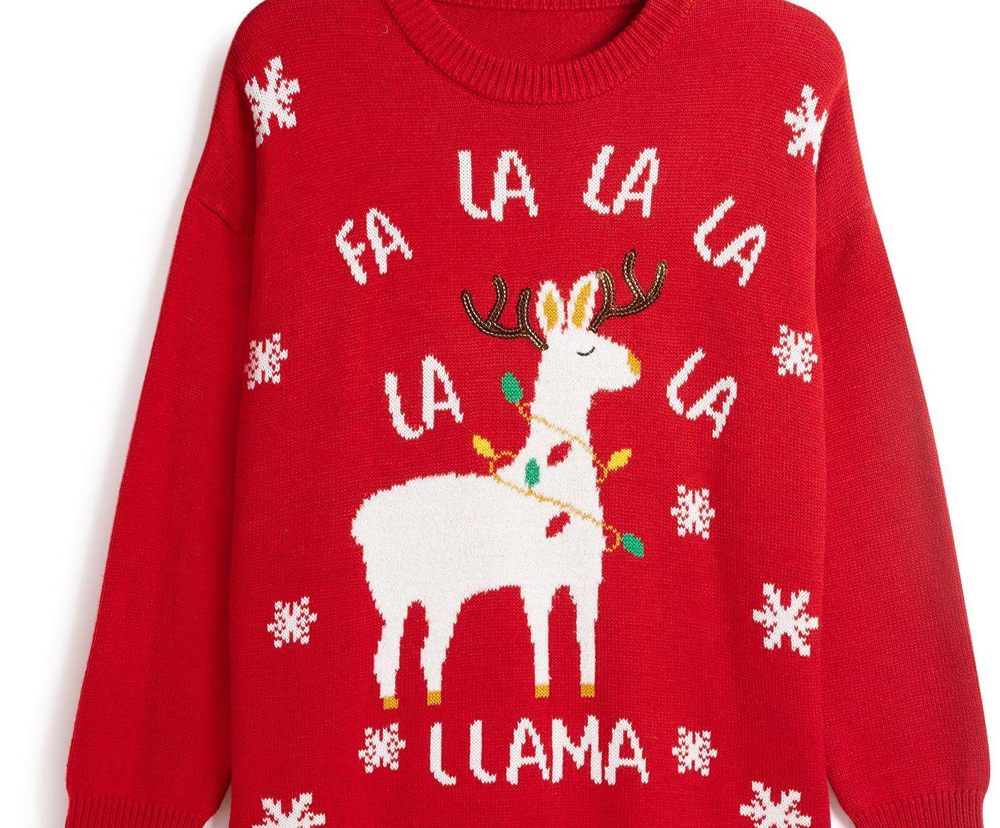The llamas are everywhere this Christmas, including on this women's jumper from Primark. £12.