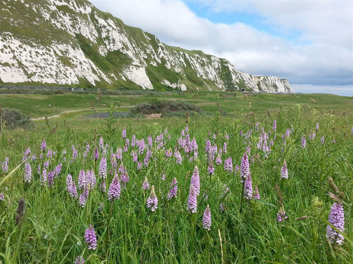 Samphire Hoe currently remains closed to visitors because of the coronavirus outbreak